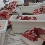 Mangalitsa carcasses cut into primal pieces awaiting finishing and curing.  Unintended consequences for the good.