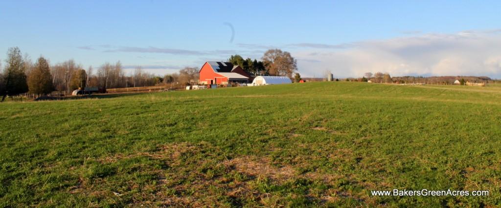 Baker's Green Acres